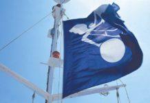 Panalpina, Flag
