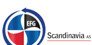 logo ems fehn group scandinavia