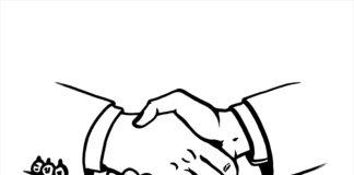 APL, MPP, Swire, Kooperation