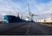 Der Bulker »Orange River« hat 24 Rotorblätter aus Brasilien in den Emder Hafen geliefert