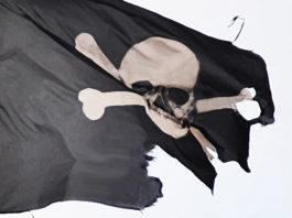 Piraten pirate flag