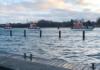 Offcon, Buksér og Berging, Lotsen, Lotsenverstzdienst, Bremerhaven